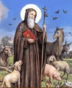S.Antonio abate, Thienet ha 21 anni